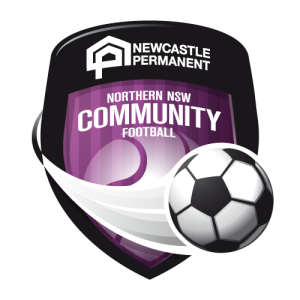 NPBS Perm Community Football Shield 500x500